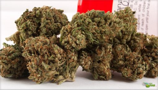 Buy Diablo OG Kush Strain online for sale