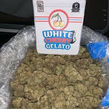 White Cherry Gelato for sale